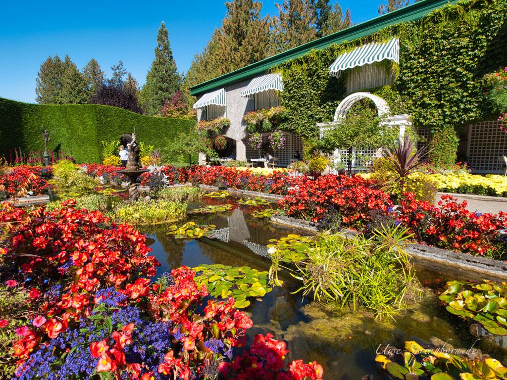 Butchards Gardens